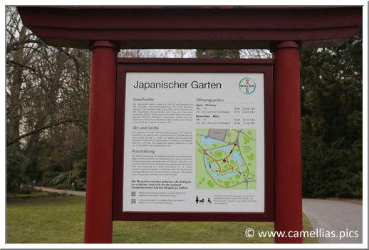 Visite - Japanischer Garten - Leverkusen